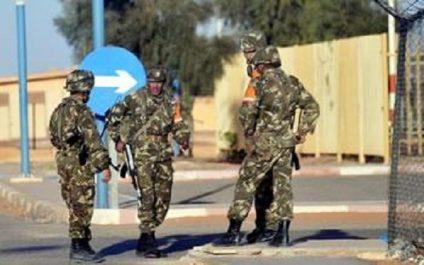 Jijel et Tamanrasset bientôt débarrassées de ce fléau : L'armée saigne les groupes terroristes