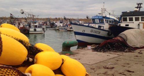 Port de pêche de Dellys (Boumerdès) : Lancement des travaux de dragage au 3e trimestre 2018