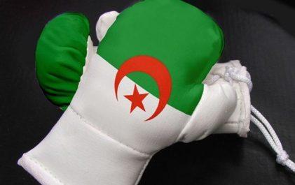 Boxe/championnat d'Afrique (4e journée): quatre Algériens en finale