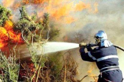Prévention et lutte contre les feux de forêts: 12 ministères font cause commune