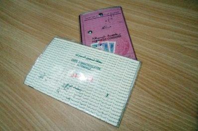 Carte grise biométrique : Les propositions des assureurs