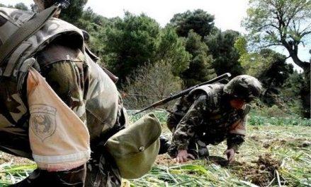 Deux bombes de confection artisanale détruites près de Bougara à Blida (MDN)