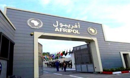 Maintien de la paix et prévention des conflits: l'engagement d'Afripol à poursuivre la coopération réitéré à New York