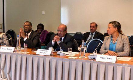 Nécessité d'un agenda unique et de l'appropriation pour le règlement des crises libyenne et malienne