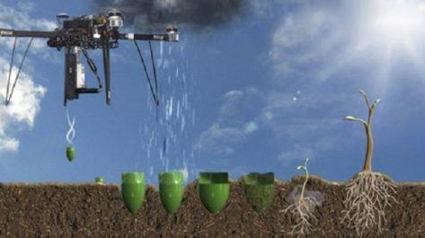 Chine: des drones utilisés dans le reboisement