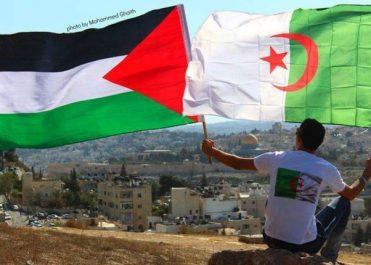 Comme en 1974, l'Algérie réintroduit la Palestine à l'ONU