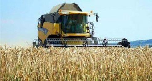 Hausse attendue dans la production des céréales