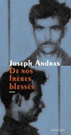 Parution de «de nos frères blessés»: Un livre traduit en langue arabe