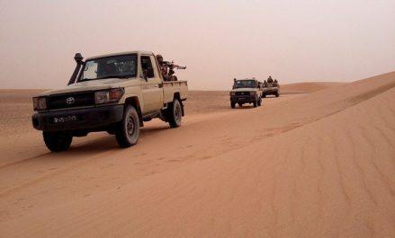 Reddition de 7 terroristes aux autorités militaires à Tamanrasset (MDN)
