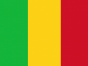 Mali: Bamako reconnaît l'implicationde militaires dans des exactions