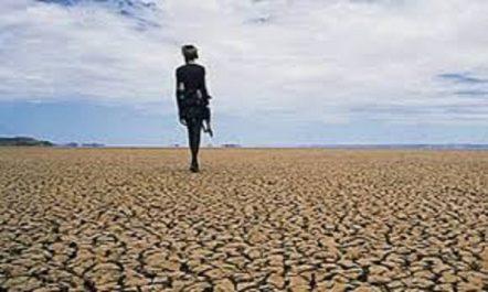 Gestion de la sécheresse au Proche-Orient et en Afrique du Nord: La FAO appelle à un «changement radical»