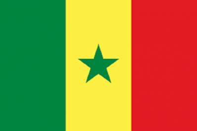 Dernier pays africain à faire son entrée en lice: Le Sénégal veut rééditer l'exploit de 2002