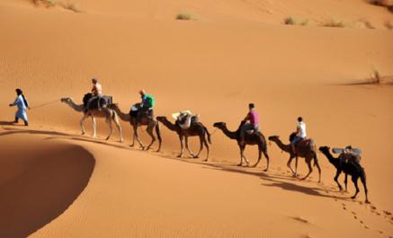 Fin des 10es journées du marketing touristique à Alger: Enjeux et défis de la destination Algérie