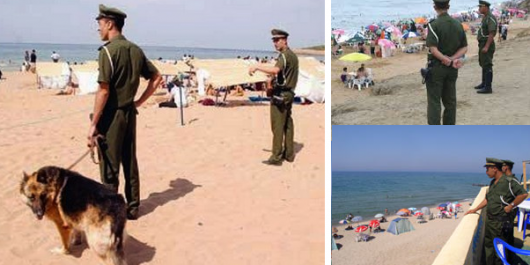 La grande offensive estivale de la gendarmerie nationale