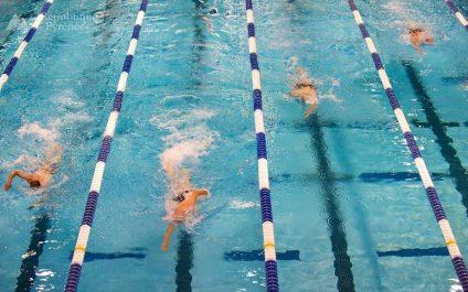 Natation – Championnats d'Afrique de natation Alger-2018: L'Algérie sans Sahnoun
