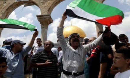 Palestine : Au moins 56 enfants tués en 2018 par Israël