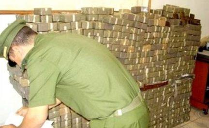 Plus de 17 kg de kif traité saisis à Tlemcen (MDN)