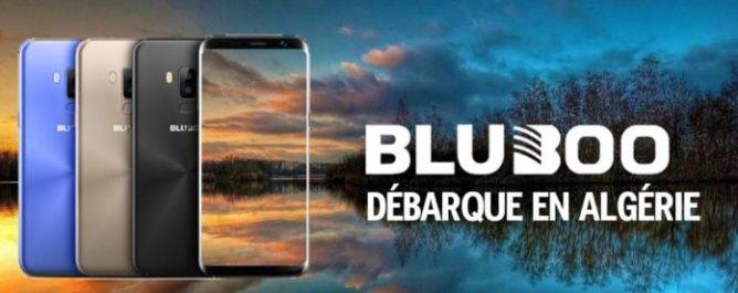 Bluboo débarque en Algérie en Made in Algeria