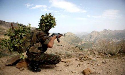 Deux éléments de soutien aux groupes terroristes arrêtés à Blida et Constantine (MDN)