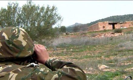 Tamanrasset: Reddition de trois terroristes