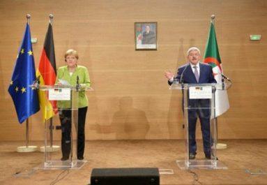 Coopération algéro-allemande: une vingtaine de dossiers de partenariat en discussion (Ouyahia)