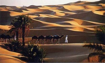 Ouargla: plusieurs opérations pour renforcer les capacités d'accueil touristiques