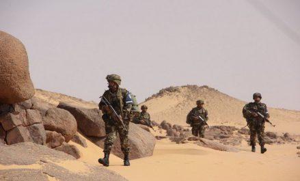 Découverte d'une cache d'armes à Tamanrasset (MDN)