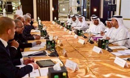 Commission mixte algéro-émiratie: consolidation et élargissement de la coopération économique