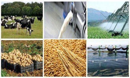 Agriculture : les opportunités d'investissement présentées aux hommes d'affaires américains