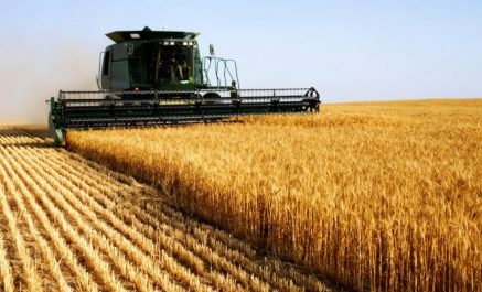 Retards des méga-projets agricoles américains en Algérie: Les lenteurs bureaucratiques pointées du doigt