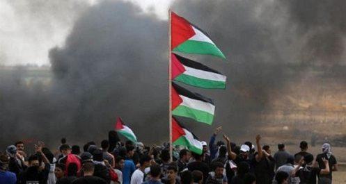 Plus de 300 Palestiniens tués par l'armée d'occupation en 2018