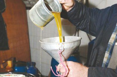 Bilan de la Campagne 2017-2018 : L'Algérie a produit 82 500 tonnes d'huile d'olive