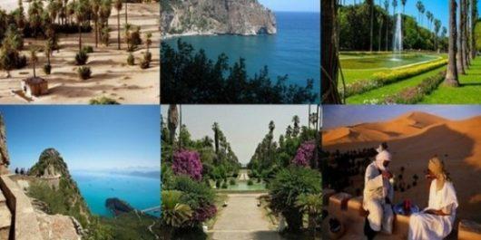 Promotion de la destination Algérie: Les professionnels du tourisme mécontents