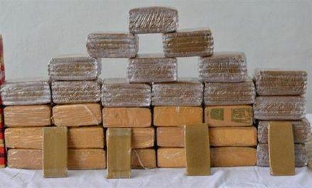 Saisie de 132 kg de kif traité dans différentes régions du pays (MDN)