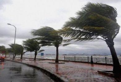 Des vents forts parfois en rafales sur plusieurs wilayas du pays