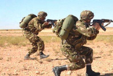 Un terroriste se rend aux autorités militaires à Tamanrasset (MDN)