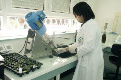 Vers l'intégration de l'immunothérapie dans les centres anti-cancer en Algérie