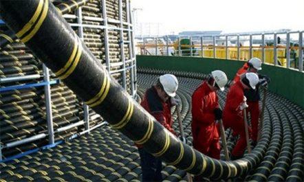Internet  : Medex, ce câble sous-marin qui  va «booster» le débit en Algérie