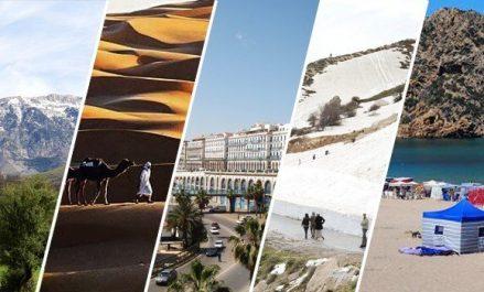 Création d'un réseau des professionnels et d'opérateurs du secteur touristique