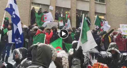 Rassemblement à Montréal contre le cinquième mandat de Bouteflika ! [vidéo]