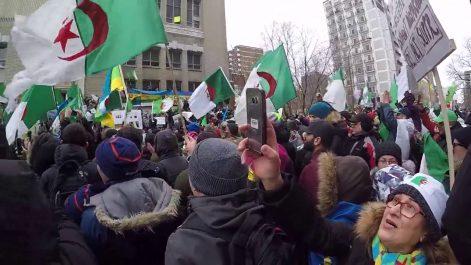 Manifestations contre le prolongement du mandat de Bouteflika : La protesta ne faiblit pas à Montréal