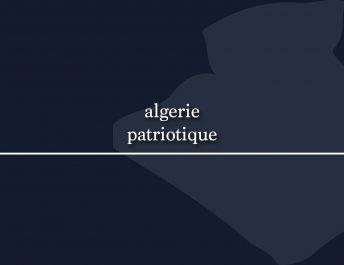 Algériepatriotique, le site d'information du fils de Nezzar, va fermer !