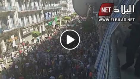 La rue hassiba à Alger est noire de monde ! [vidéo]