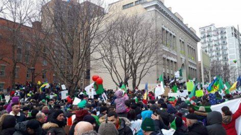 """Rassemblement des algériens du Canada : """"La transition maintenant"""""""