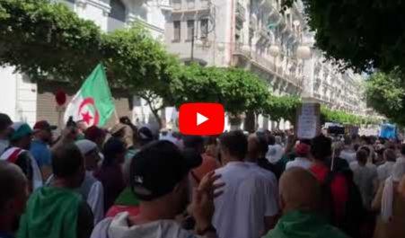 27e vendredi : Les manifestants affluent sans arrêt vers le centre-ville d'Alger