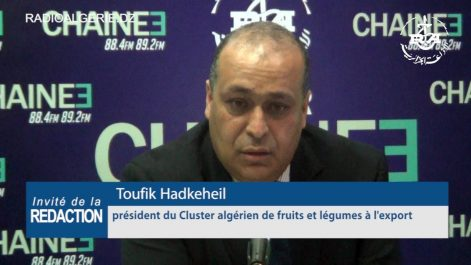 Toufik Hadkeheil, président du Cluster algérien des fruits et légumes à l'export (Caflex) : « La baisse des exportations hors-hydrocarbures est due à la conjoncture politique »