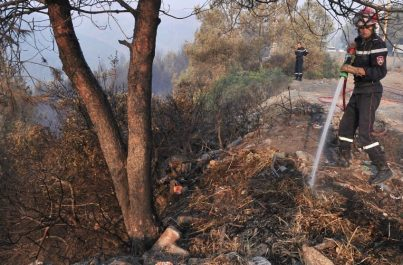 Incendies de forêt : 45 départs de feu en 48 heures à Tizi Ouzou