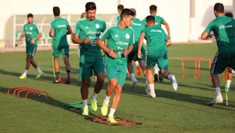 J-1 du match Algérie – Bénin : Belmadi peaufine son plan