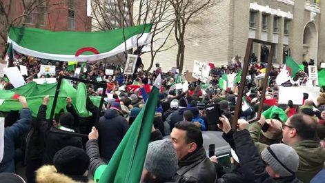 """Manifestation des algériens à Montréal dimanche : """"Pas d'élection avec les résidus du système"""""""