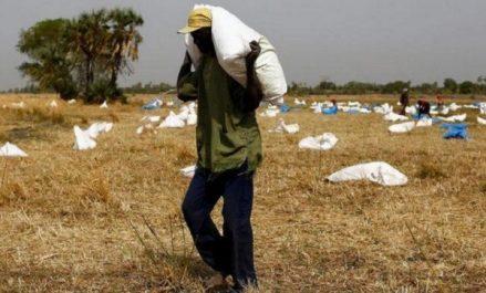 Soudan du Sud : plus de la moitié de la population peine à survivre